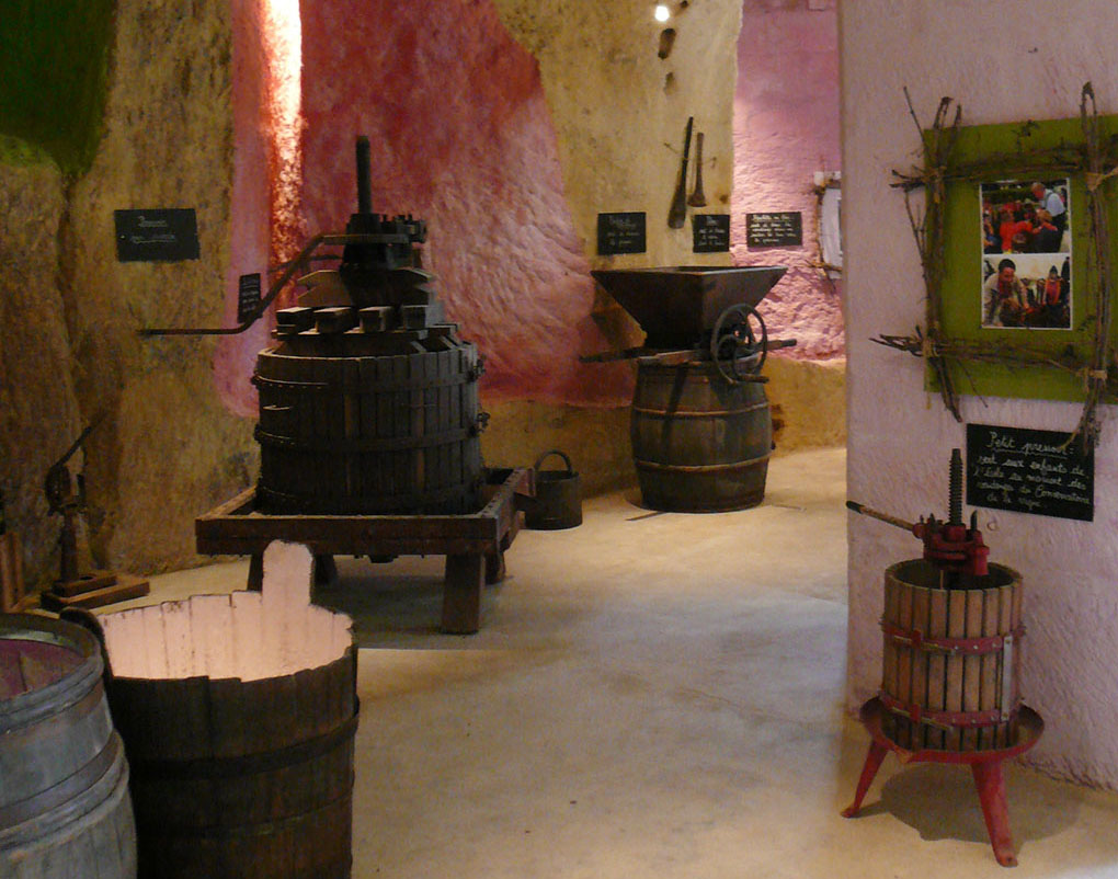 mathilde_meignan-châteauvieux_vigne_vin_5