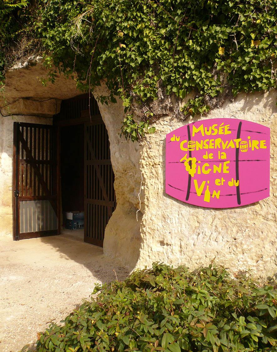 mathilde_meignan-châteauvieux_vigne_vin_6