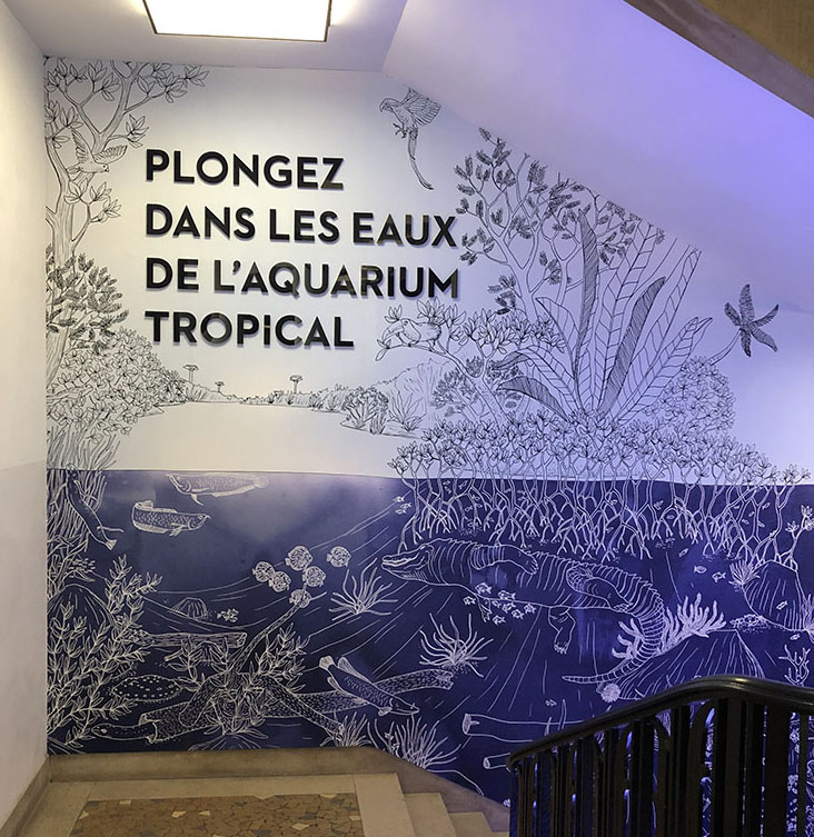 mathilde_meignan_aquarium_porte_dorée_permanent_parcours