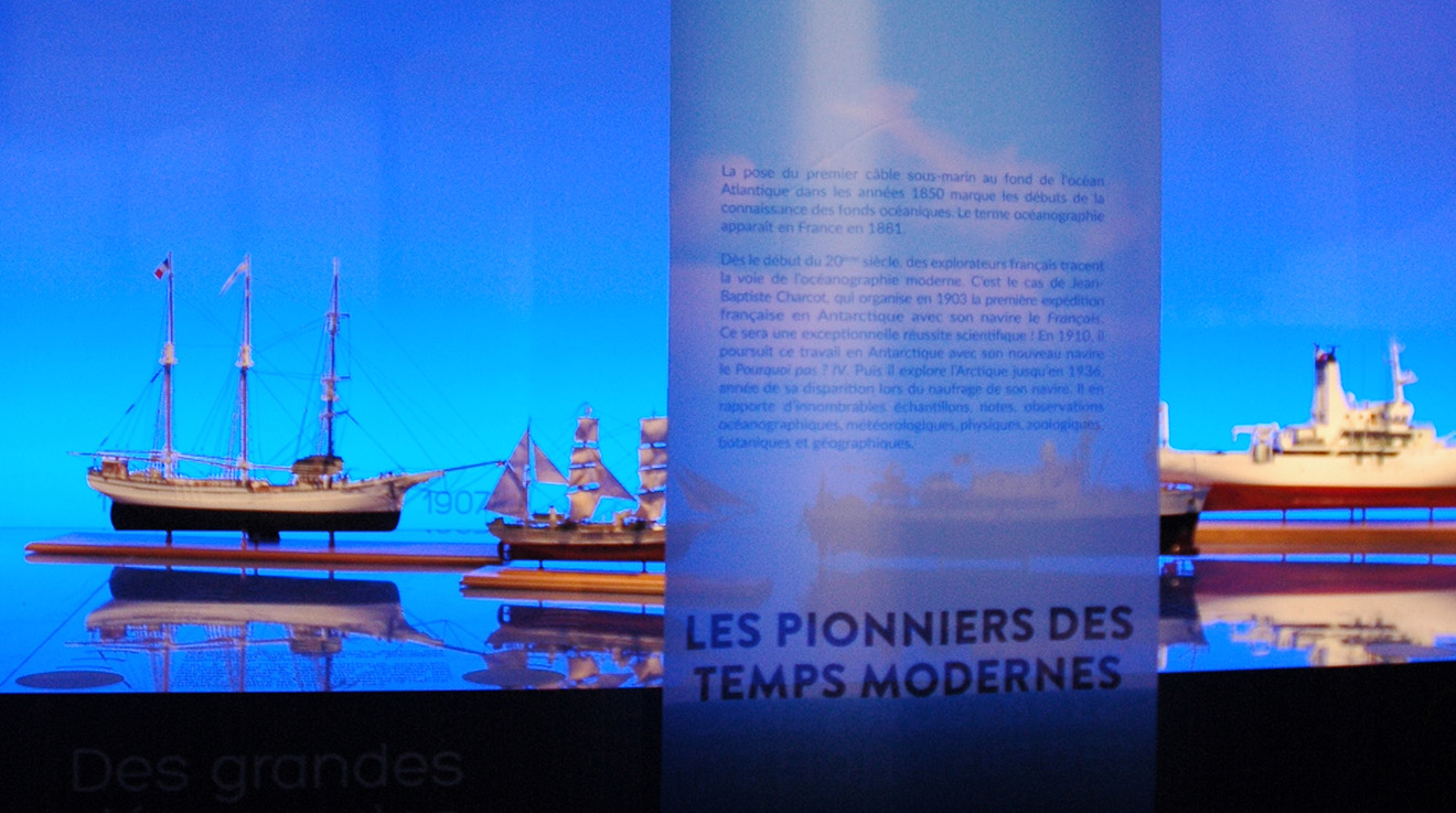 mathilde_meignan-océanographique-aquarium_porte_dorée_2